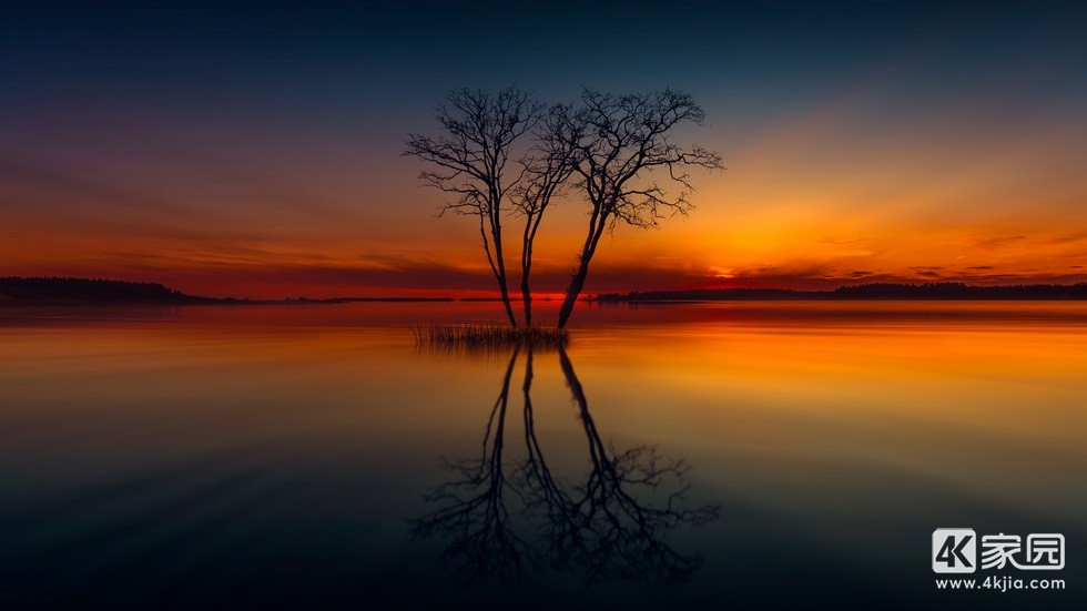 horizon-lake-nature-reflection-sunset-tree-image-3840x2160.jpg