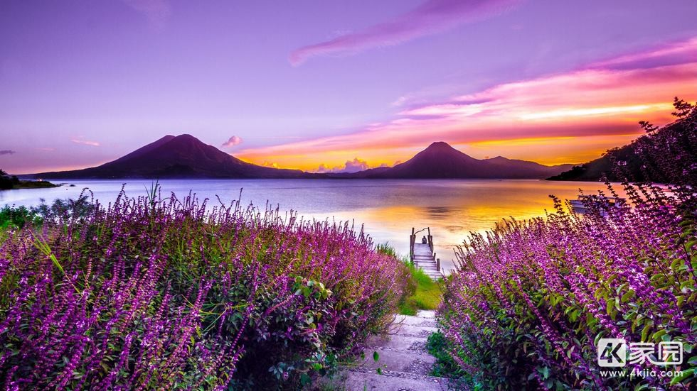 volcano-sunset-flower-purple-dreamy-landscape-4k-5k-yf-3840x2160.jpg