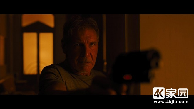 Blade_Runner_Blu-ray_Ryan_Gosling_Harrison_Ford_-_High-Def_Digest_Review_1.JPEG