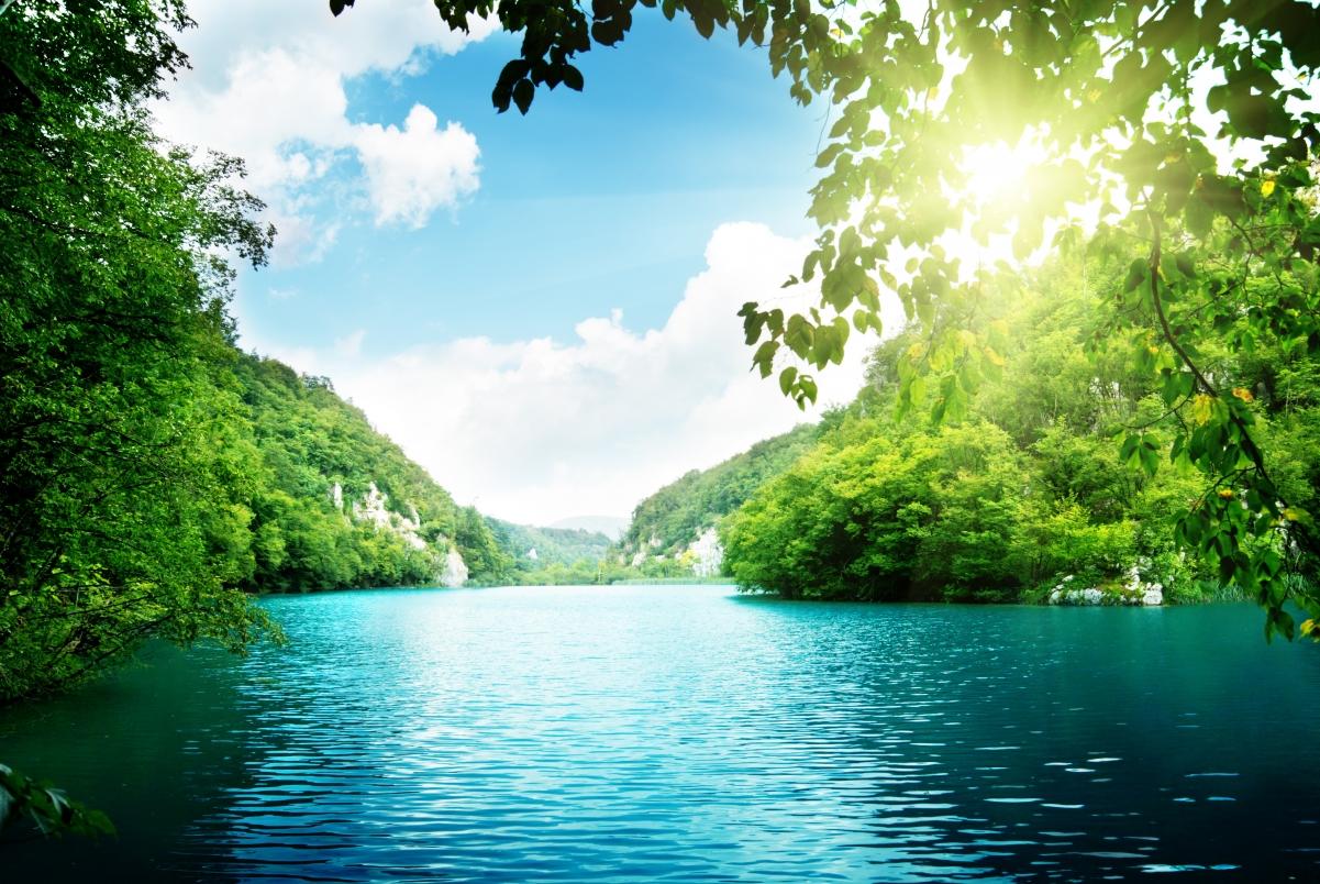湖泊,树木,深林,大海,天空,云,美丽的自然风景5k壁纸