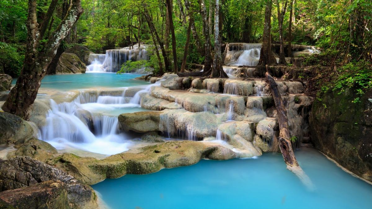 森林 树木 溪流 瀑布 岩石 4k风景壁纸