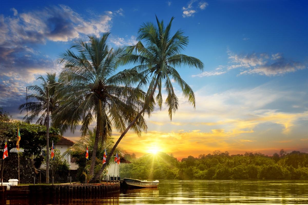 天空 云 太阳 日落 热带 棕榈树 沙滩 船 河流风景4k图片